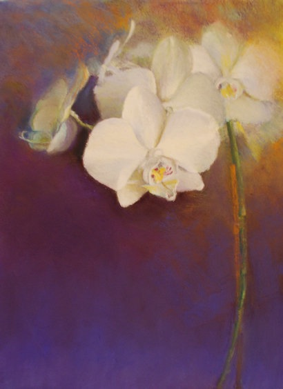 Pastel of orchids