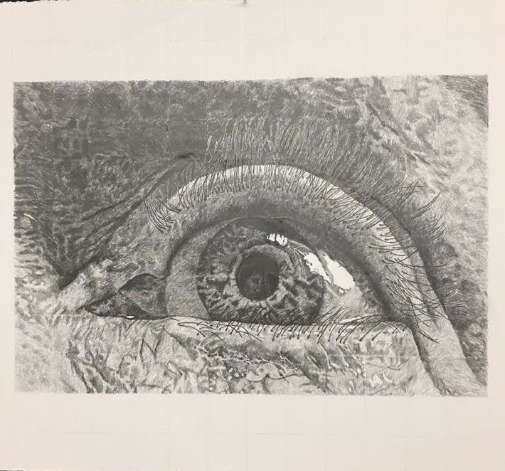 Closeup drawing of eye